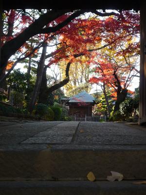 静勝寺の秋