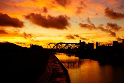 土手の早朝(新河岸川)