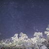 晩秋に舞い降りる星雪