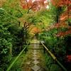 秋の京紀行ー光悦寺ー