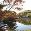 日本庭園4