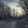 真冬のひかり