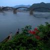 雨の錦帯橋