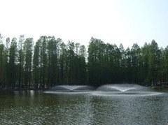 別所沼公園の噴水