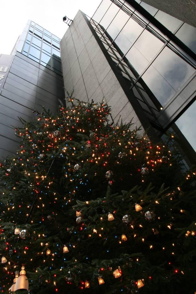 ビルの谷間のクリスマスツリー