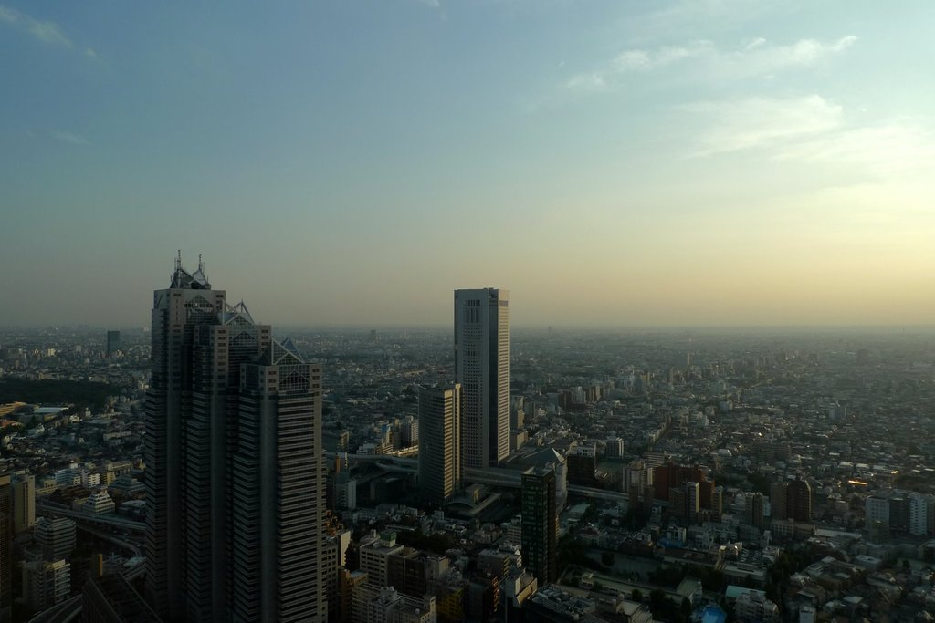 都庁展望台からの眺め