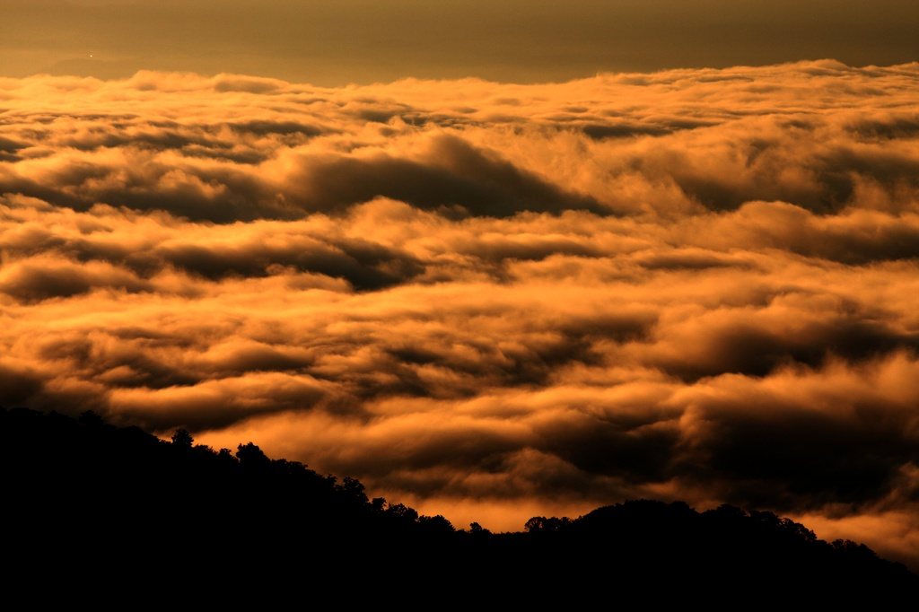 雲海の夜明け
