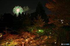 花火と紅葉_02