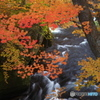 竜頭の滝下流