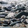 塩成の砂浜