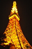 Tokyo Tower Today