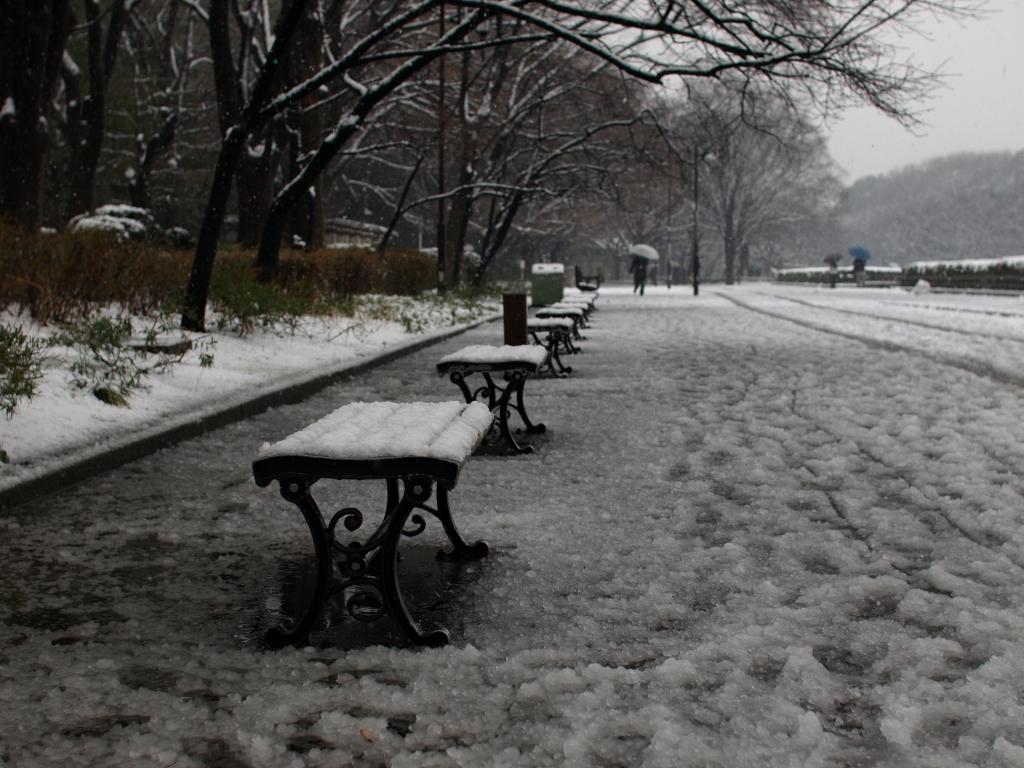 Snow Chair