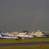 虹のフライト