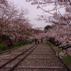 京都蹴上インクラインⅡ