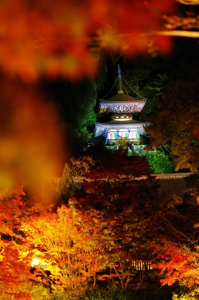 多宝塔の秋