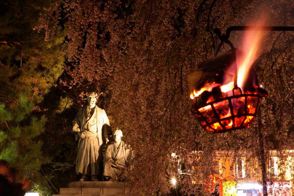 夜桜の円山公園