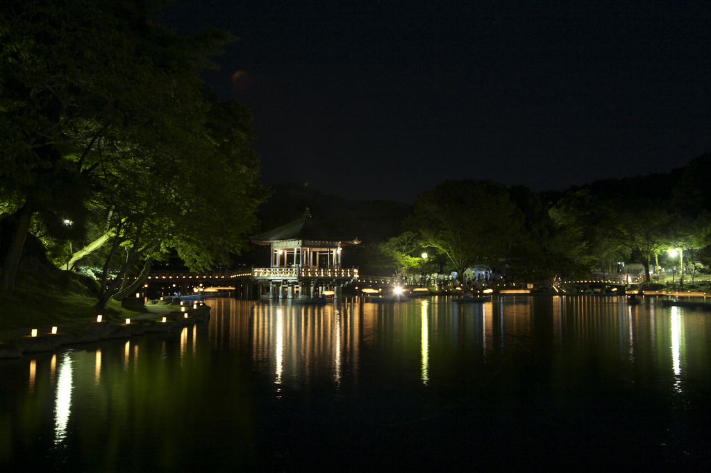奈良 燈花会 2009