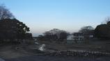 万博公園 夕景