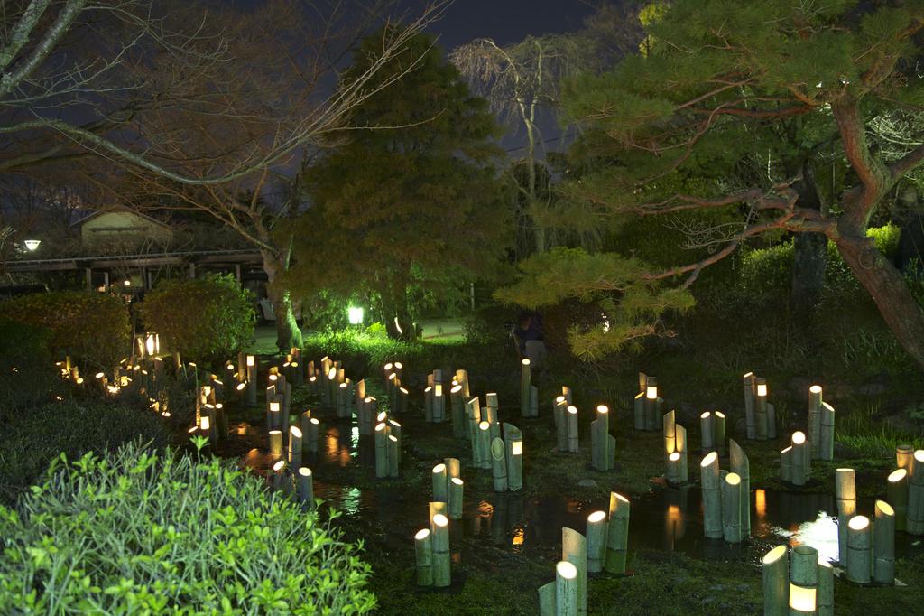 京都東山花灯路 竹灯り・幽玄の川