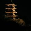 備中国分寺のライトアップ