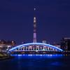 東京スカイツリーと永代橋(ホワイトショコラ)