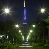 東京タワー特別ライトアップ / 戦後70年 鎮魂と平和の祈り