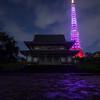 東京タワーピンクリボンライトアップ2015