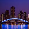 永代橋ライトアップとリバーシティ21