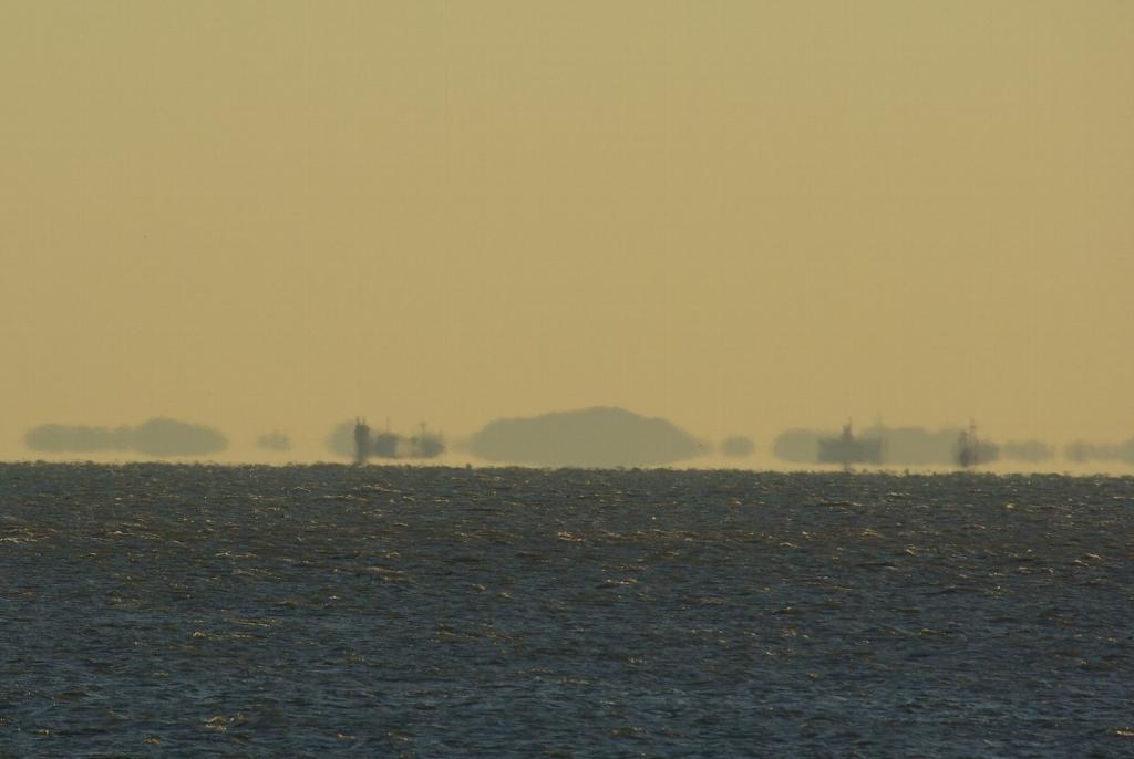 浮島(東京湾)
