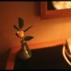 別れの花冠