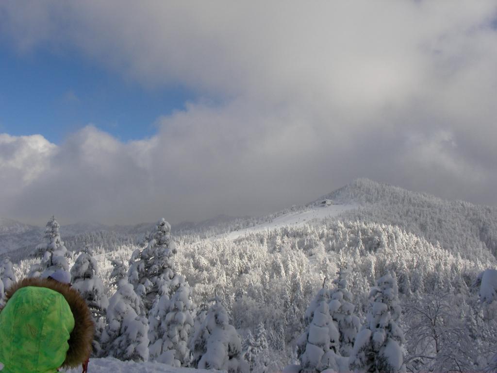 吹雪の後の風景