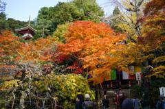 京都 泉涌寺1