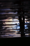 反映〜雨上がりの朝〜