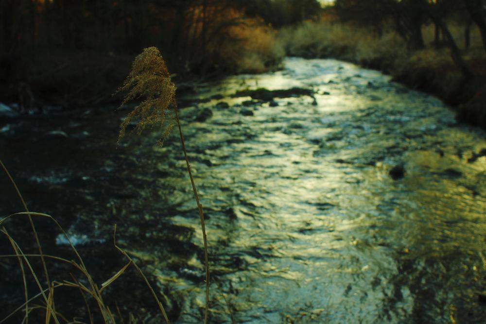 夕刻の風景