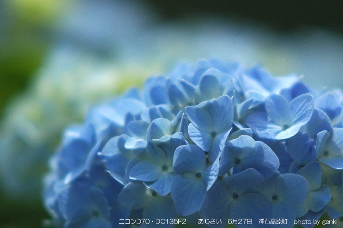 3DSC_9254ah