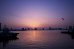 東京湾日の出