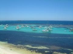 ロットネスト島
