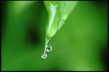 水玉の世界14