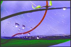 水玉の世界23
