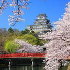 CANON Canon EOS 40Dで撮影した風景(姫路城)の写真(画像)