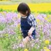 花さじき1