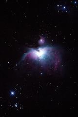 オリオン大星雲(20cm直焦点)