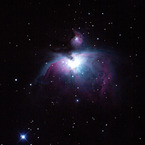 CANON Canon EOS 50Dで撮影した風景(オリオン大星雲(20cm直焦点))の写真(画像)