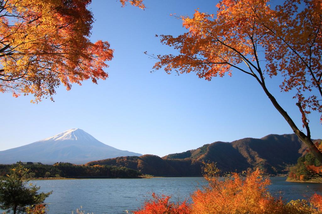 富士の紅葉