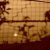 フェンス越しの夕日