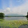 大沼から望む駒ケ岳
