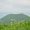 花と草原と米塚