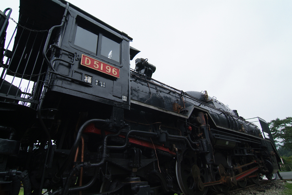 D51 96