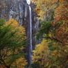 秋の米子大瀑布(権現滝)