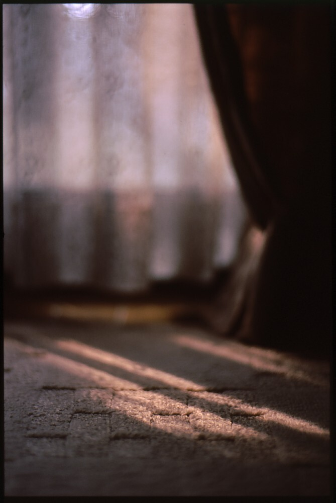 フィルム写真
